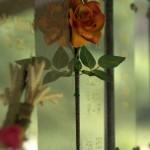 Cimetière mur pour urnes
