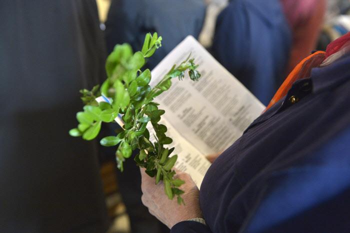 12 avril 2014 : Célébration de la messe des Rameaux, égl.Saint-Rémy de Vanves (92), France. April 12, 2014 : The Palm Mass, St-Rémy church, Vanves (92), France.