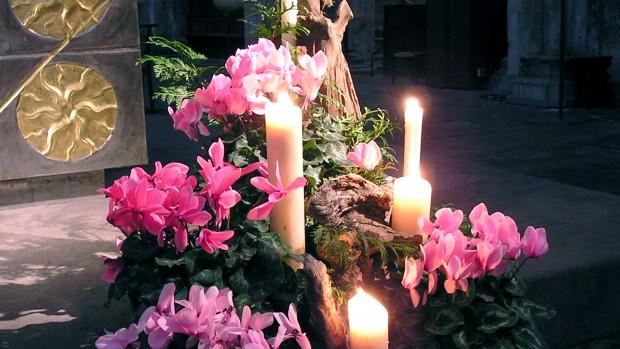 Fleurir pendant l'Avent
