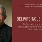 Mgr de Kerimel ouvrage Délivre-nous du mal (1)