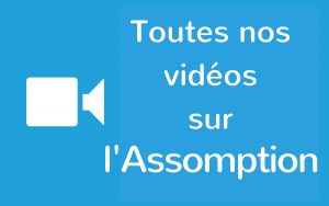Toutes-nos-vidéos-5-300x188
