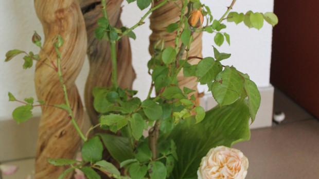 fleurir-composition-florale