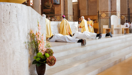 Composition florale : glaïeuls roses, hortensias, chrysanthèmes.  21 octobre 2017 : Ordination diaconale présidée par Mgr Michel AUPETIT, en la cathédrale de Nanterre.